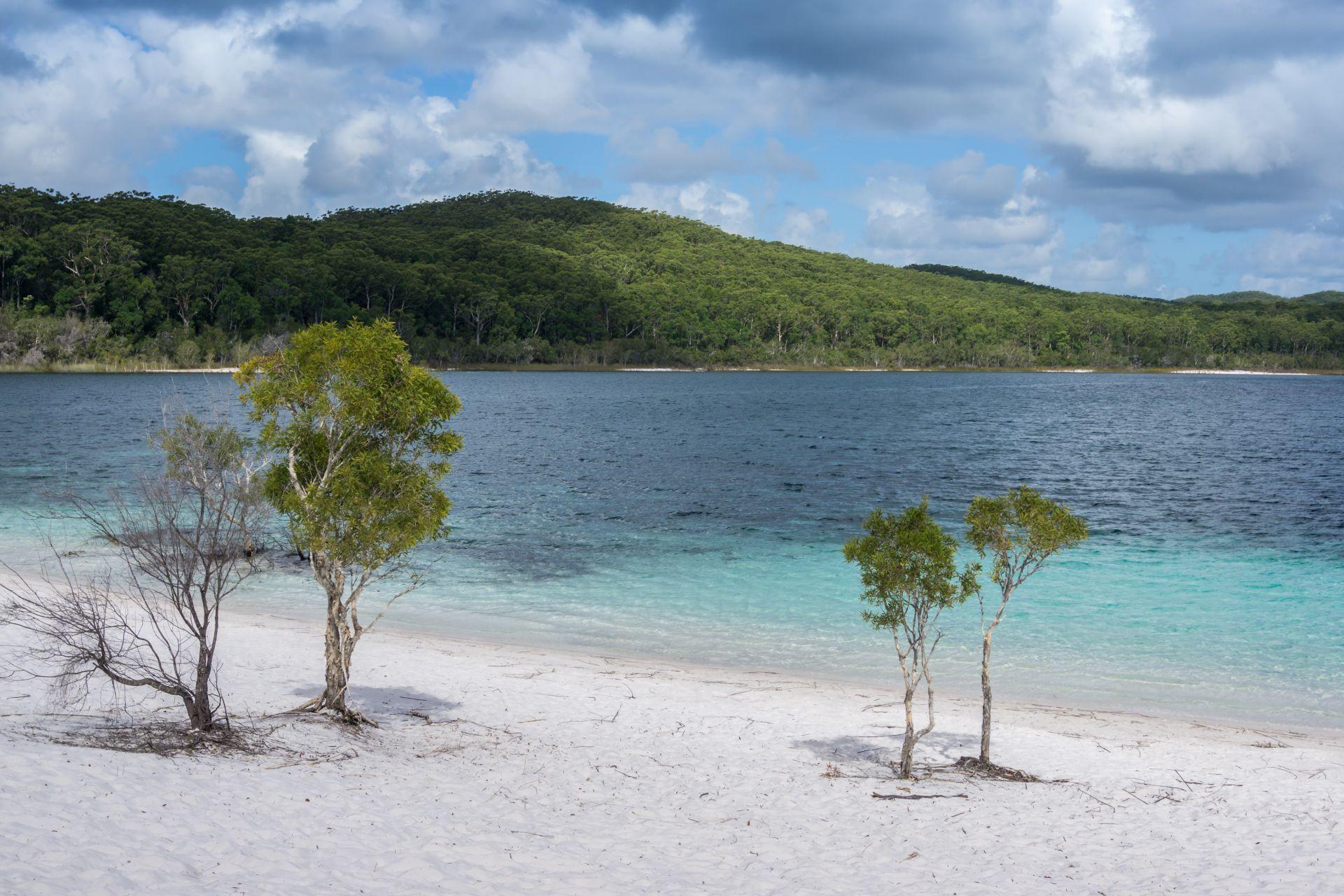 Jezero Mckenzie Fraser Island